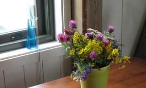 Blomster-2